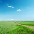 road in green field under blue sky
