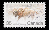 Canadian mail stamp featuring the migration of bison, circa 1981