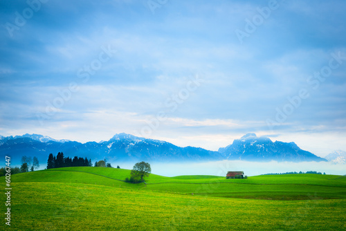 green meadow hill landscape with hut, tree and mountains