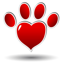 Red paw of an animal
