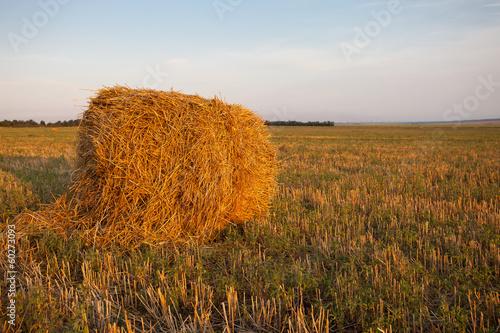 Leinwandbild Motiv haystack field