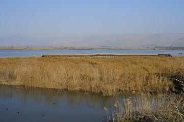 The Hula Valley, Israel