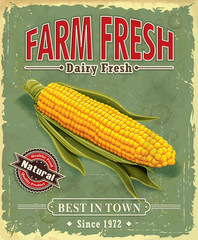 Vintage Farm fresh Corncob poster design