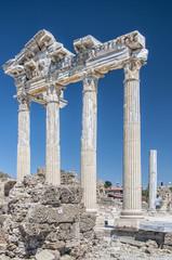 Side Temple of Apollo 19