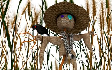Spaventapasseri, paglia, campo di grano, mietitura, corvi