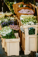 London typical flower street market with roses, tulips, freesi