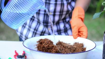 Man is mixing coconut husk fiber and organic fertilizer