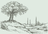 Fototapety Vector landscape. Oak tree on the hill
