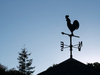 Wind vane silhouette in a roof