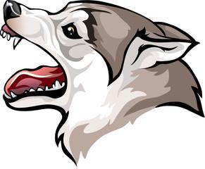 dog growls