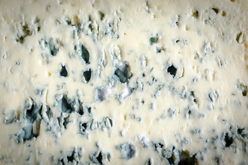 Texture of blue cheese