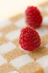 Raspberry on sugar