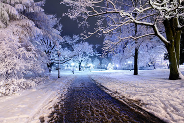 Central park in Riga, Latvia at winter night