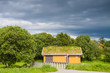 Scandinavian house with grass covered roof
