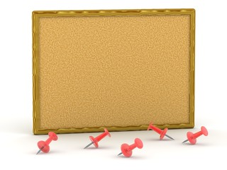 3D cork board with pins