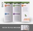 Web Service Tri-Fold Brochure Design