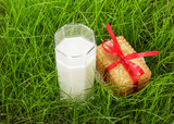 Glass of fresh milk and cookies on green grass