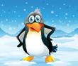 A big penguin in a snowy area
