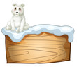A polar bear above an empty wooden board