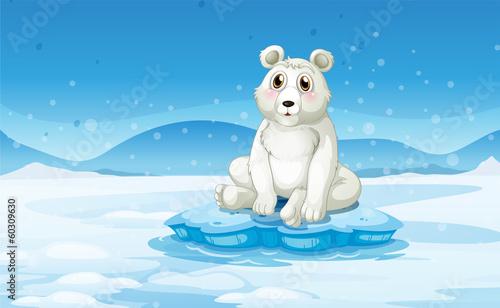 A polar bear in a snowy area
