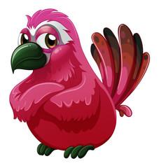 A big bird