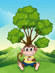 A monkey frowning under the tree at the hilltop