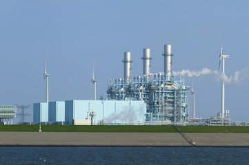 Multi fuel power plant