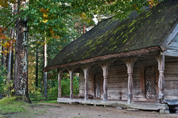 Old log cabin in the wooded forest of evergreen trees