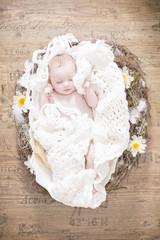 Baby liegt in einer Eierschale Draufsicht hell