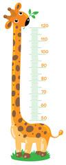 Giraffe  stadiometer