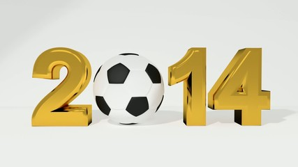 Fussball WM 2014