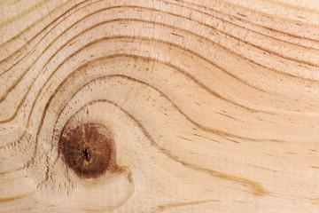 Texture di legno con nodo