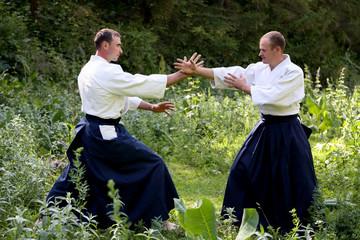 Training  martial art  Aikido.
