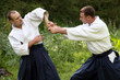 Training  martial art  Aikido.