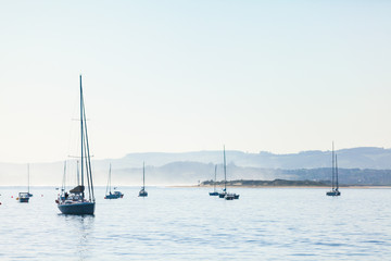 Several yachts with one in front, hills behind