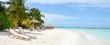 paradise beach - 60325845