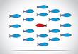 smart happy fish going against group unique different concept