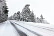 canvas print picture - Straight winter road with tress on both sides