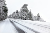 Fototapety Straight winter road with tress on both sides
