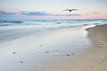 la playa de la gabiota