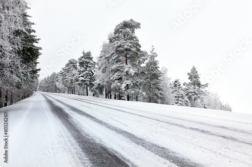 Straight winter road with tress on both sides