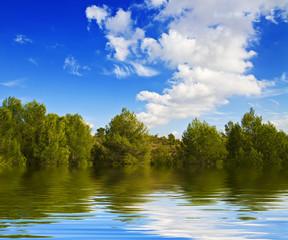un dia radiante en el lago