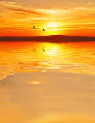 cuando el mar se pinta de naranja