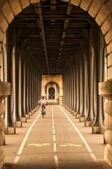 Viaduct de Passy with bike rider
