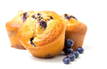 Muffins with blueberry on white background