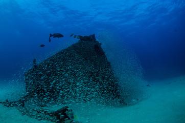 shipwreck, pacific.