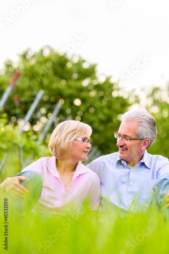 Glückliche Senioren sitzen in Weinberg