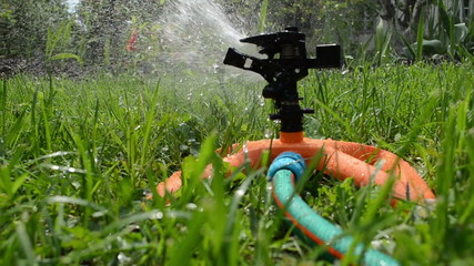 Sprinkler spray watering flowers and lawn grass in garden