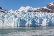Glacier Bay, Alaska - 60334272