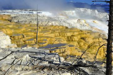 toxic sulphur steps, volcanic activity, yellowstone nat park,usa